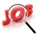 Buscador de empleo